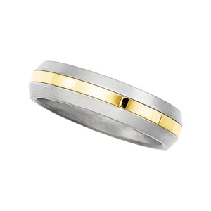 6mm Titanium and 18K Yellow Gold Men's Band.